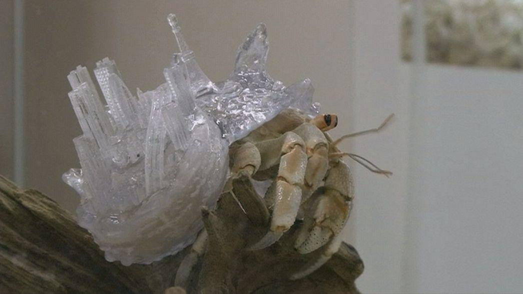 Caparazones 3D para cangrejos ermitaños de la artista Aki Inomata