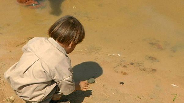 إيفو موراليس يشارك بإلقاء السلاحف في النهر