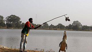 Yacouba Sawadogo : l'homme qui défie le désert au Burkina Faso