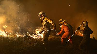 Spanish forest fires rage in Asturias region