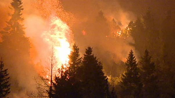 Vasto incendio sull'Altopiano di Asiago