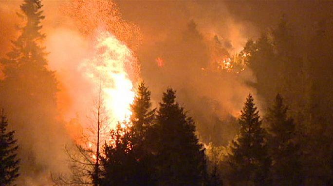Tűzvész és rügyező fák az olasz Alpokban