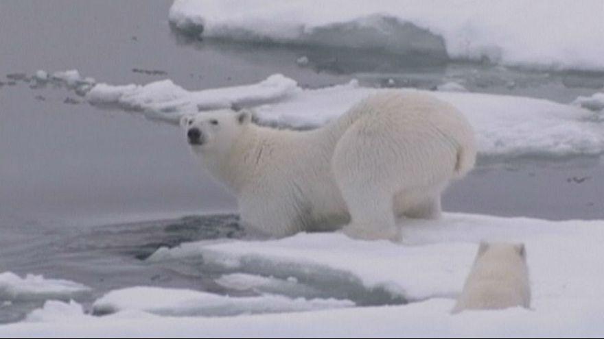 El Polo Norte vive su invierno más caliente