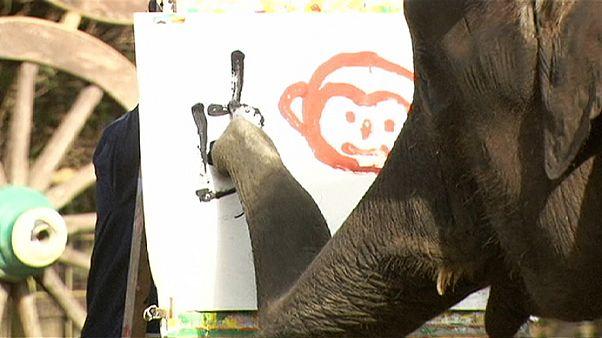 Elefántok a majom évében