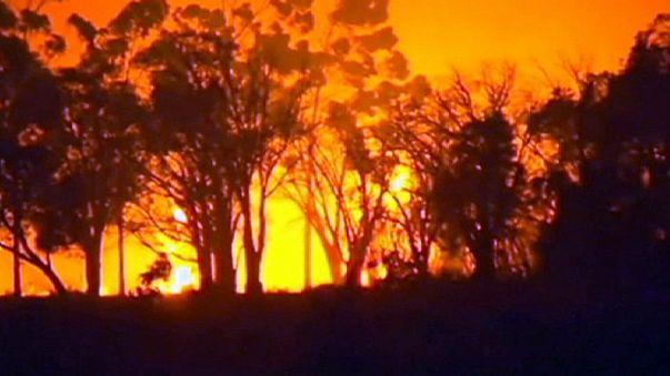 Avustralya'da yangın tarihi kentin üçte birini yok etti