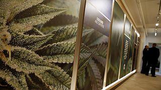 13 tonnes de marijuana saisies au large des côtes libyennes