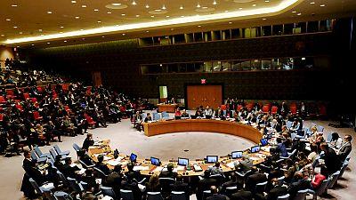 Conseil de sécurité de l'ONU : les attentes de l'Afrique