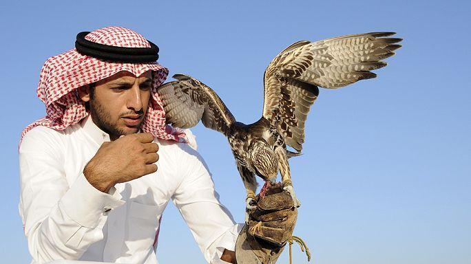 """Katarlı zenginlerin akıl almaz tutkusu """"Şahin Festivali"""""""