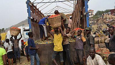 Nigeria: Dangote's tomato facility to tackle poverty, unemployment