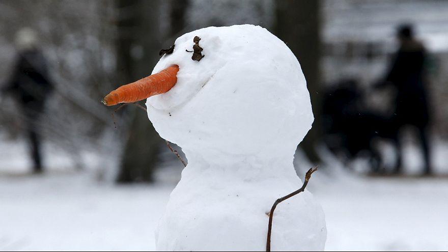 Nichts macht Mensch und Hund so glücklich wie Schnee