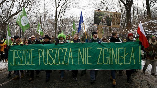 Protesta en Varsovia contra la tala de 400.000 árboles