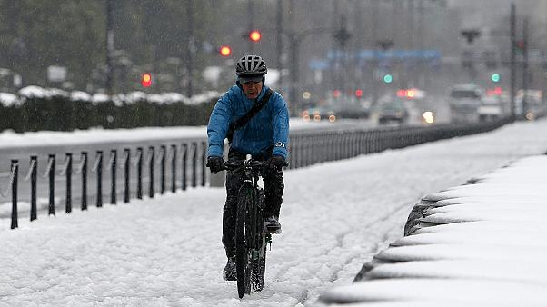 الثلوج لأول مرة هذا العام في طوكيو