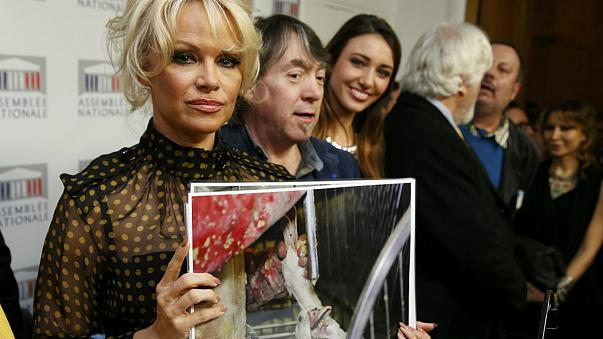 """Pamela Anderson em França pela defesa dos patos contra o """"foie gras"""""""