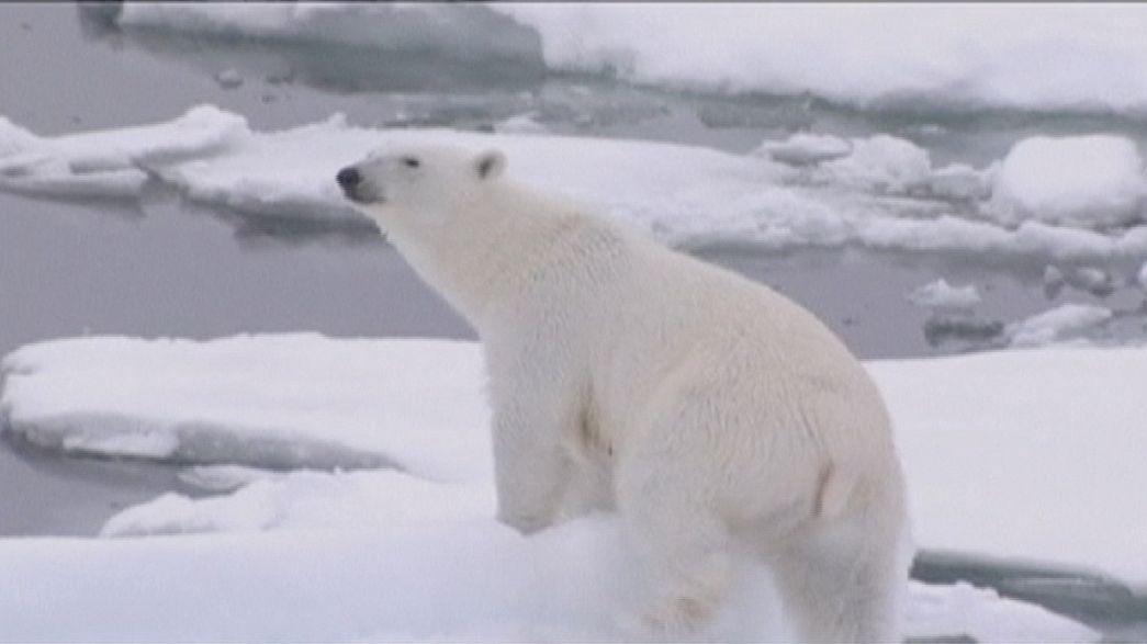 Laut US-Klimabehörde: 2015 sprengt Hitzerekord