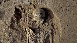 Kenya : des squelettes aux marques mortelles vieux de 10.000 ans