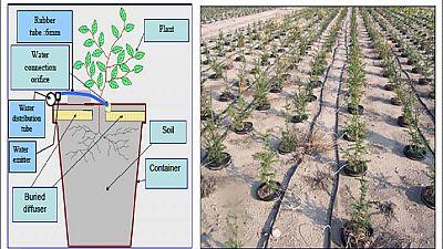 Tunisie : une technologie innovante pour révolutionner l'irrigation