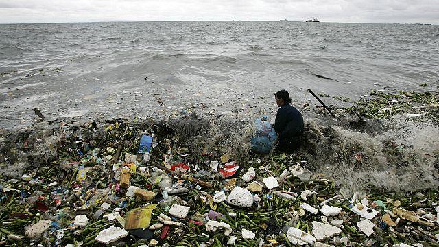 2050 yılında denizlerde balıktan çok plastik olacak