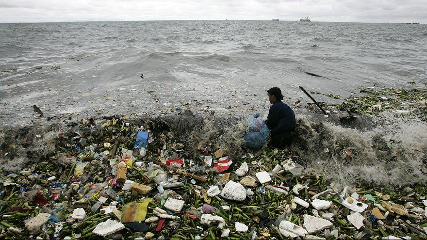 В океанах скоро будет больше пластика, чем рыбы