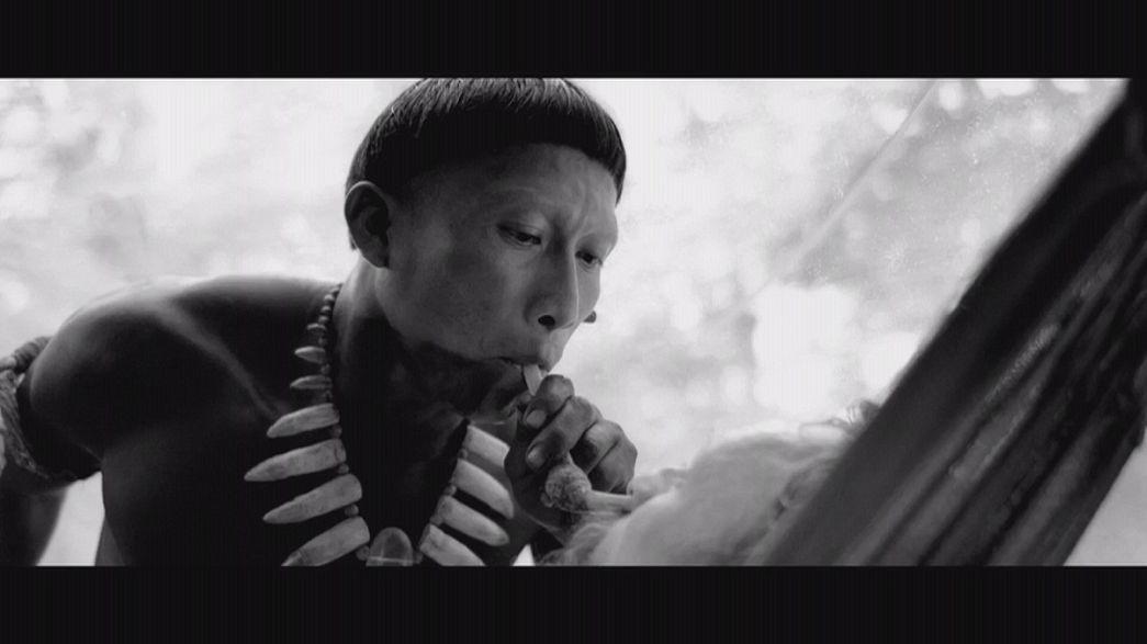 «Στην αγκαλιά του φιδιού»: Από τον Αμαζόνιο στα Όσκαρ