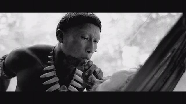 'Embrace of the Serpent': Colombia's soulful Oscar entry