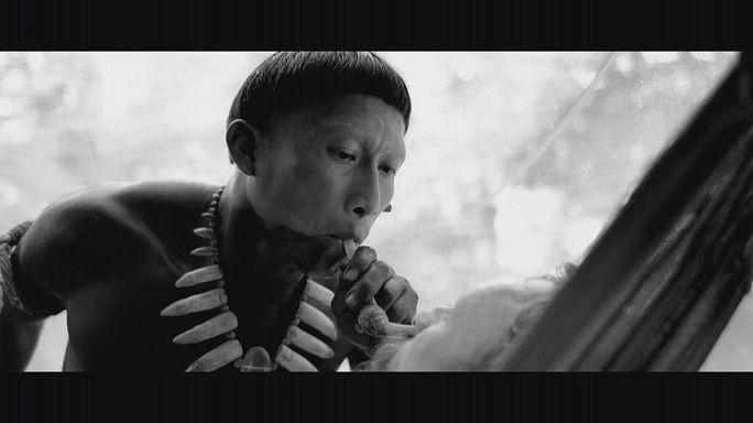 «آغوش شیطان» تصویری از شکوه بومیان آمازون و زخم استعمار