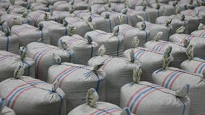 Cameroon: Coffee export increases by 8.24 percent last year