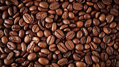 L'Ouganda promeut la culture du café
