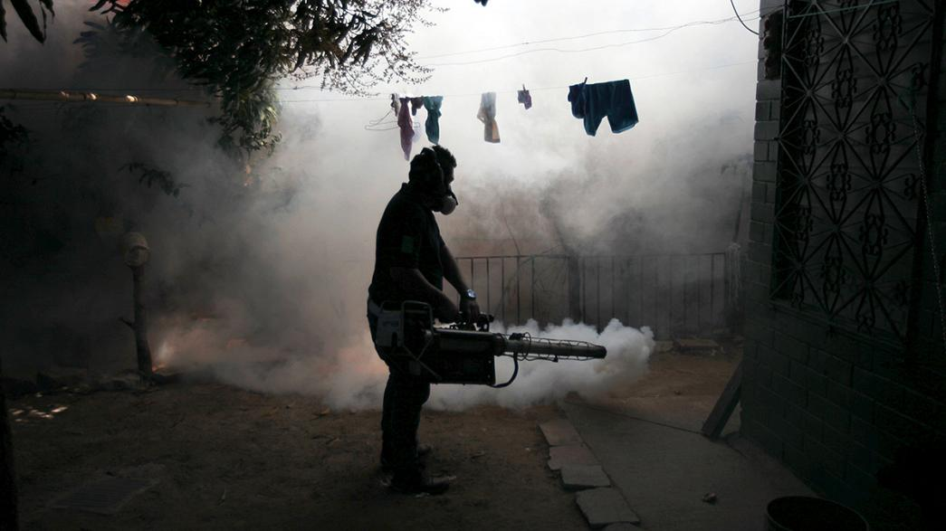 Zika-Virus: Reisewarnung für Schwangere