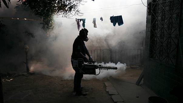 Grávidas em perigo por causa do vírus Zika na América Latina