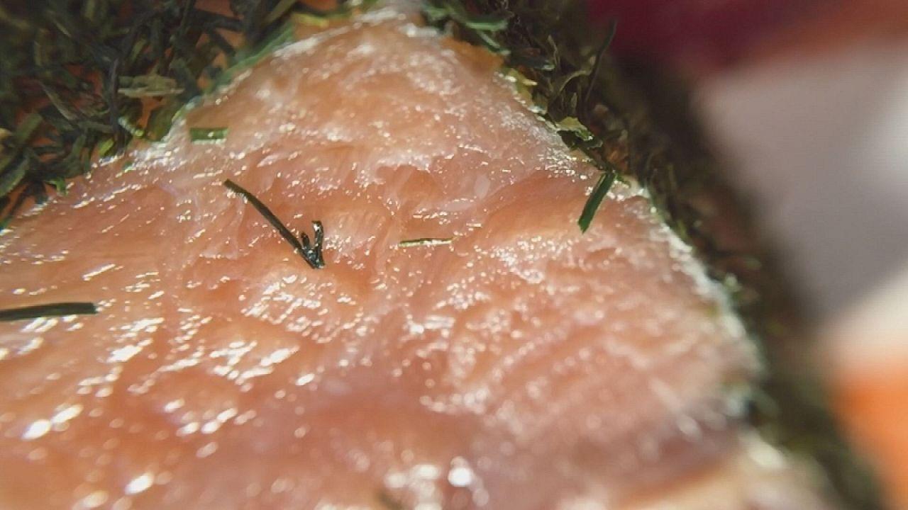 O salmão marinado em bactérias