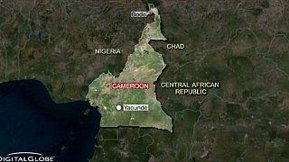 در بمبگذاری های انتحاری در کامرون دست کم ۲۵ نفر کشته شدند