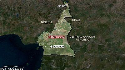 Anschläge in Kamerun: mindestens 28 Tote