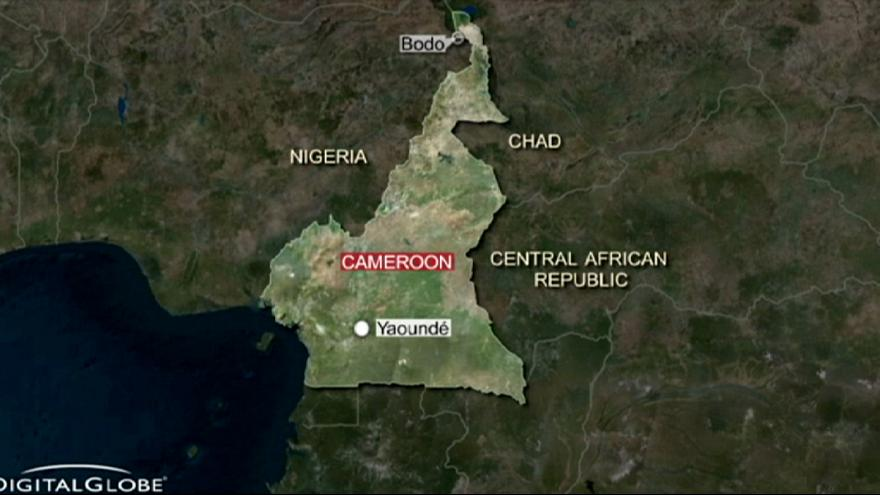 Cameroon: suicide bombers kill more than 20