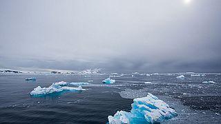 Britischer Südpol-Abenteurer an Reisestrapazen gestorben