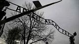 Auschwitz'in kurtuluşunun 71. yıldönümü anılıyor