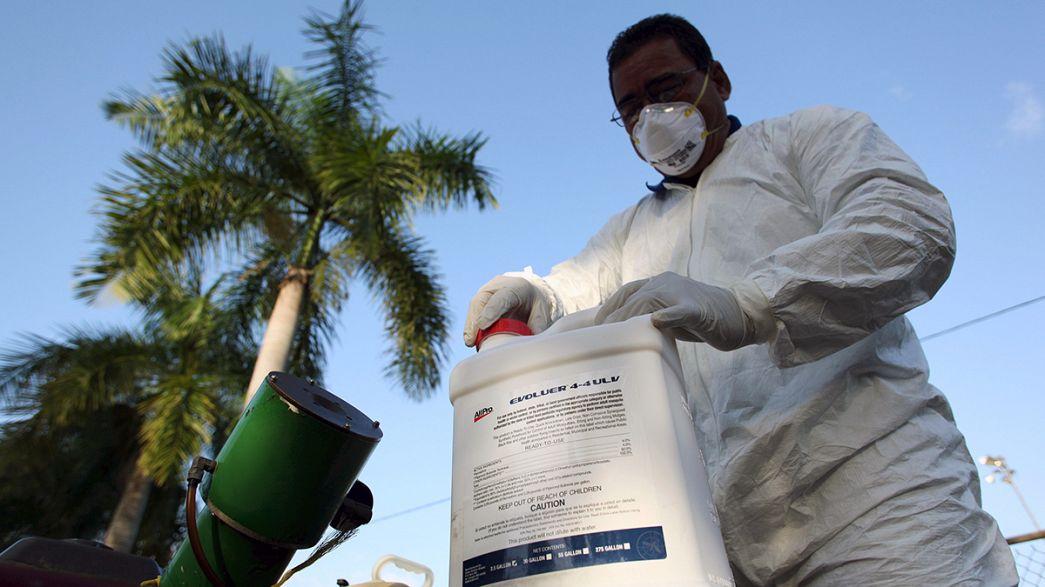 """Weltgesundheitsorganisation: """"Drei bis vier Millionen Zika-Infektionen in Südamerika möglich"""""""