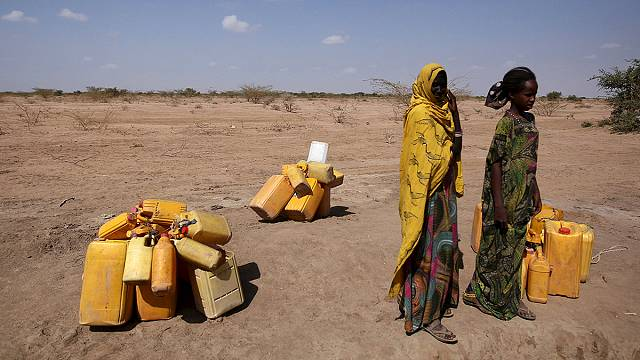 Plea for cash as Ethiopia battles one of its worst droughts in decades