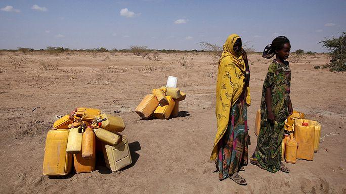 الجفاف يجتاح مساحات من أثيوبيا