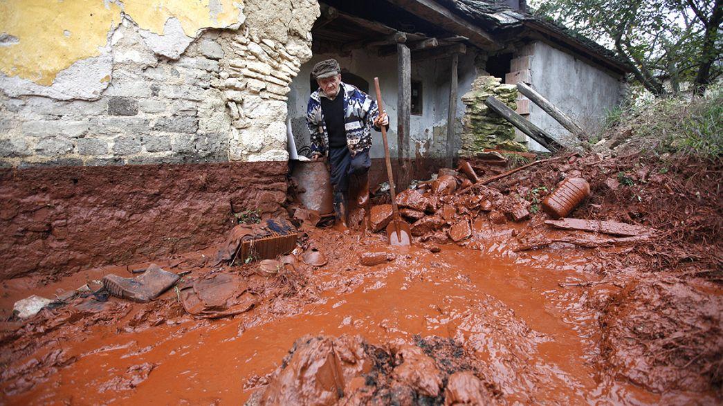 Macaristan: Zehirli çamur selinin sanıkları aklandı