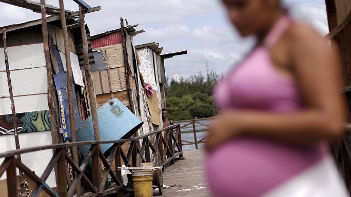 Pour lutter contre le virus Zika, le Brésil cherche a empêcher la reproduction du moustique Aedes aegypti