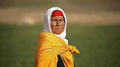 Tunisie : collecte de l'herbe alfa