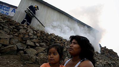 Zika : les faits derrière le virus