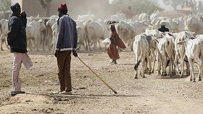 Le nord du Nigeria dans l'attente du plan de relance de son industrie