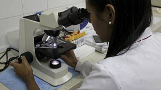 Un laboratoire indien entrevoit un vaccin contre Zika