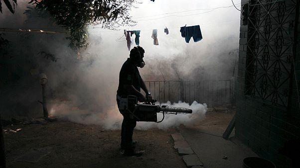 نشست وزیران بهداشت آمریکای جنوبی برای مقابله با ویروس زیکا