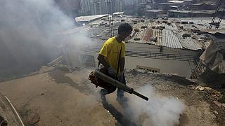 Mexico: 37 Zika virus cases confirmed in seven states