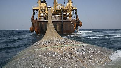 Mauritania moves to stop overfishing