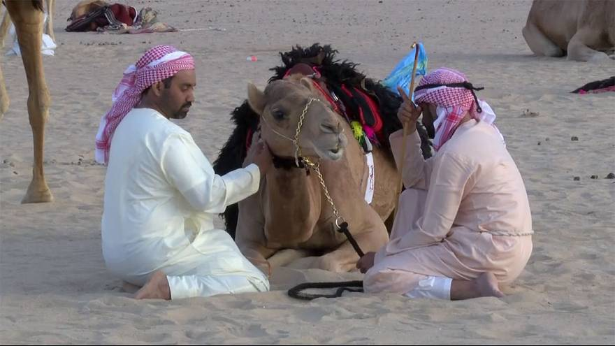 Una Camel Trek negli Emirati Arabi Uniti