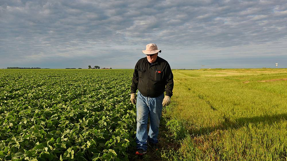 Administration to offer billions in aid to farmers hurt by Trump's trade war
