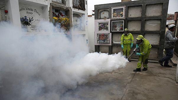 Virus Zika: 3 morti in Colombia, Onu chiede di tollerare contraccezione e aborto